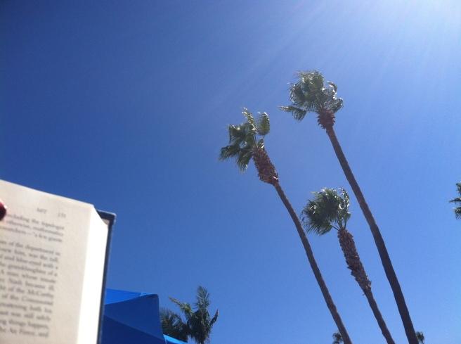 book blue sky